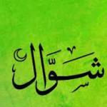shawwaal